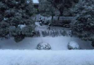 海南女孩见雪兴奋,雪中玩一下午成面瘫资讯生活